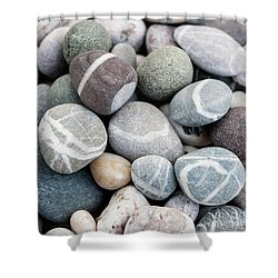 Shower Curtain featuring the photograph Beach Pebbles Close Up by Elena Elisseeva