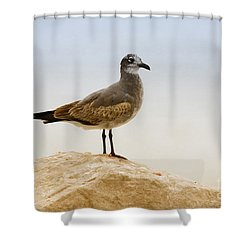Shower Curtain featuring the photograph Beach Pose by Deborah Benoit