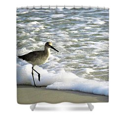 Beach Sandpiper Shower Curtain