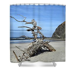 Shower Curtain featuring the photograph Beach Sculpture by Peggy Hughes