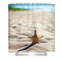 Beach Starfish Wood Texture Shower Curtain by Dan Sproul
