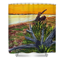 Shower Curtain featuring the painting Beach Sunset by Jack G  Brauer
