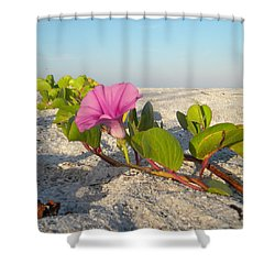 Beach Vine Shower Curtain by Sean Allen