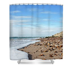 Beachcombing Shower Curtain by Terri Waters