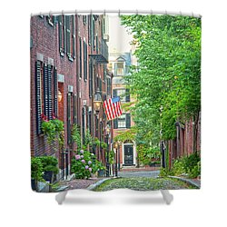 Beacon Hill Shower Curtain