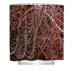 Beads Of Raindrops Shower Curtain