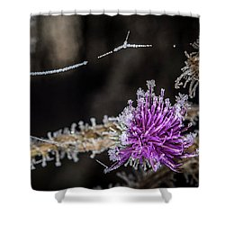 Beadwork Shower Curtain by Annette Berglund