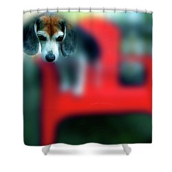 Beagle Beba Portrait Shower Curtain