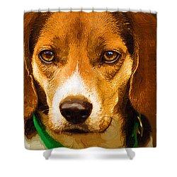 Beagle Hound Dog In Oil Shower Curtain by Kathy Clark