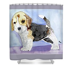 Beagle Pup Shower Curtain