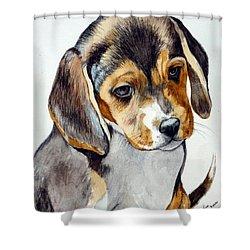 Beagle Puppy Shower Curtain