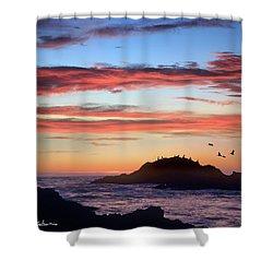 Bean Hollow Beach Shower Curtain by Tim Fitzharris