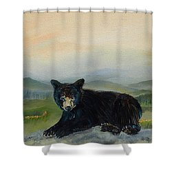 Bear Alone On Blue Ridge Mountain Shower Curtain