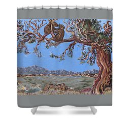 Shower Curtain featuring the painting Bear Cubs In Cedar by Dawn Senior-Trask