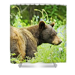 Bear In Flowers Shower Curtain