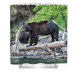 In The Great Bear Rainforest Shower Curtain
