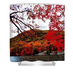 Shower Curtain featuring the photograph Bear Mountain Hessian Lake Autumn by Janine Riley