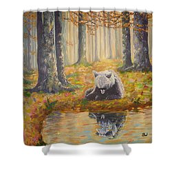 Bear Reflecting Shower Curtain
