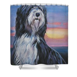 Bearded Collie Sunset Shower Curtain by Lee Ann Shepard