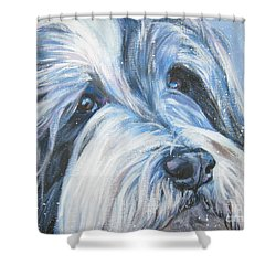 Bearded Collie Up Close In Snow Shower Curtain by Lee Ann Shepard