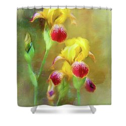 Bearded Iris Pair Shower Curtain