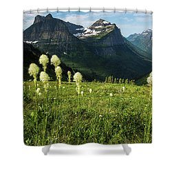 Beargrass - Glacier Np Shower Curtain