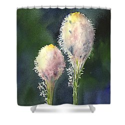 Beargrass Shower Curtain