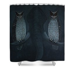 Bearing Witnesses Shower Curtain