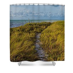 Beaten Path Shower Curtain by Swank Photography