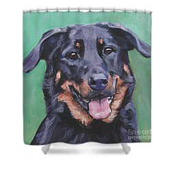 Shower Curtain featuring the painting Beauceron Portrait by Lee Ann Shepard