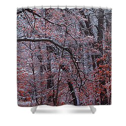 Shower Curtain featuring the photograph Beautful Change by Kadek Susanto