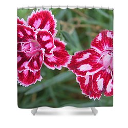 Shower Curtain featuring the photograph Beauties In My Garden by Jeanette Oberholtzer