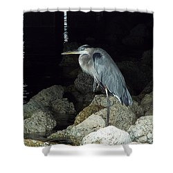 Beautiful And Patience Heron Shower Curtain