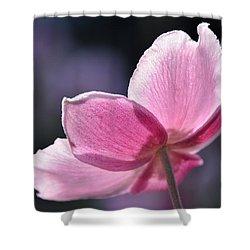 beautiful Anemone Shower Curtain