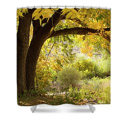 Beautiful Autumn  Shower Curtain