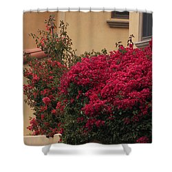 Beautiful Balcony With Bougainvillea Shower Curtain