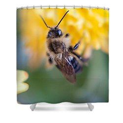 Beautiful Bee Shower Curtain