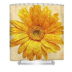 Beautiful Blossom Shower Curtain
