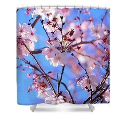 Beautiful Blossoms Blooming  For Spring In Georgia Shower Curtain