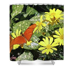 Beautiful Butterflies Shower Curtain