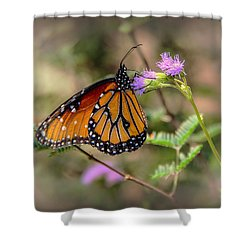Beautiful Butterfly Shower Curtain by Elaine Malott