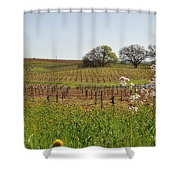 Beautiful California Vineyard Framed With Flowers Shower Curtain
