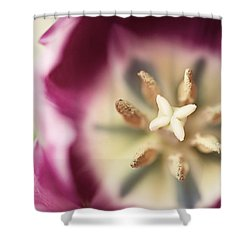 Beautiful Child Shower Curtain by Lisa Russo