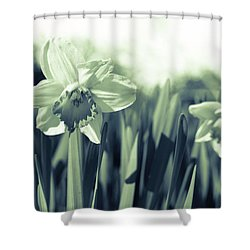 Beautiful Daffodil Shower Curtain