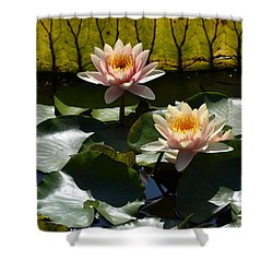 Beautiful Dainties Shower Curtain