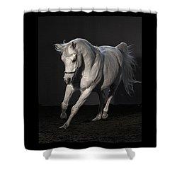 Beautiful Dancer Shower Curtain