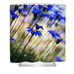 Beautiful Dancing Blue Flowers Romance Shower Curtain