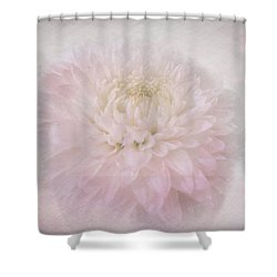 Beautiful Dreamer Shower Curtain by Wallaroo Images