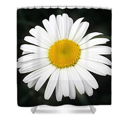 Shower Curtain featuring the photograph Beautiful Flower by Milena Ilieva
