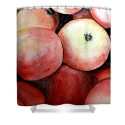 Shower Curtain featuring the painting Beautiful Gala Apples by Carol Grimes